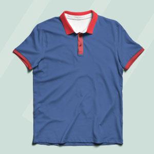 Collor/Polo T Shirts Image