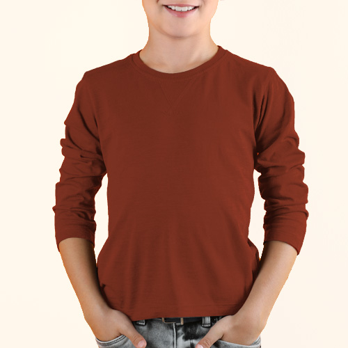Boys Round Neck Full Sleeves Brown image