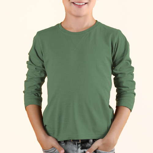 Boys Round Neck Full Sleeves Green Apple image
