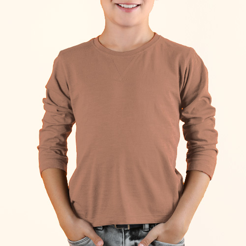 Boys Round Neck Full SleevesLight Saffron image