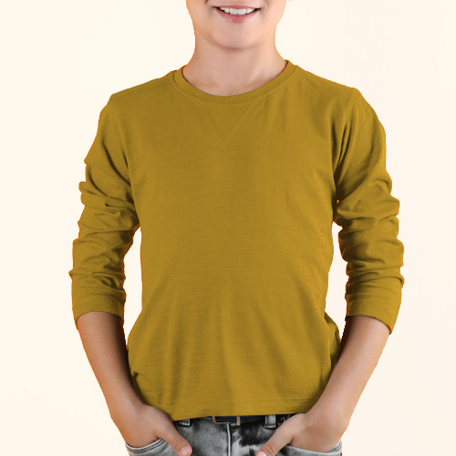 Boys Round Neck Full Sleeves Yellow image